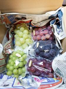 ラピアビンヤード の家庭用ぶどう食べ比べセットのイメージ画像